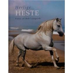 Herlige heste