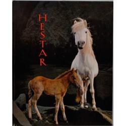 Hestar