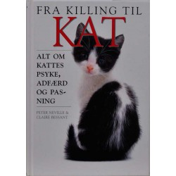 Fra killing til kat