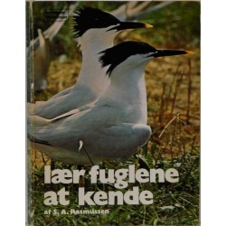Lær fuglene at kende
