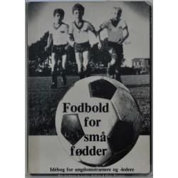 Fodbold for små fødder