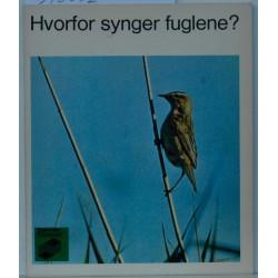 Hvorfor synger fuglene?