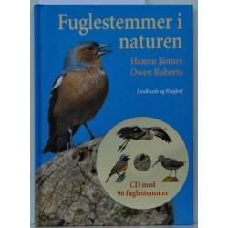 Fuglestemmer i naturen