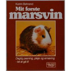 Mit første marsvin