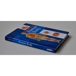 Handbook of the Human Body