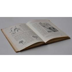 Lærebog i Botanik