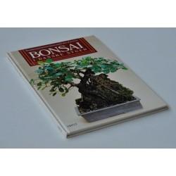 Bonsai i danske stuer