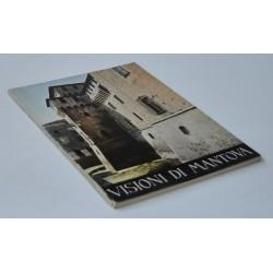 Visioni di Mantova