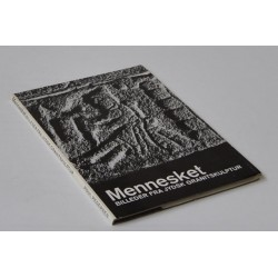 Mennesket. Billeder fra jydsk granitskulptur
