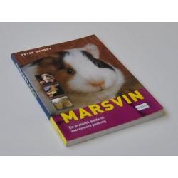 Marsvin - En praktisk guide til marsvinets pasning