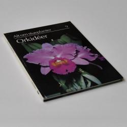 Alt om stueplanter 9 – Orkidéer