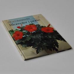 Alt om stueplanter 7 – Blomster i potte