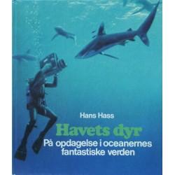 Havets dyr – På opdagelse i oceanernes fantastiske verden