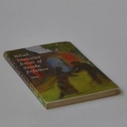 Bibelhistorier for af danske forfattere