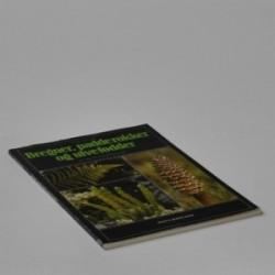 Bregner, padde-rokker og ulve-fødder - en bog om karsporeplanter