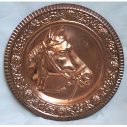 Platte - hest