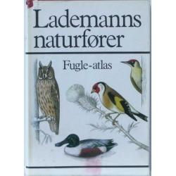 Lademanns naturfører Fugle-atlas