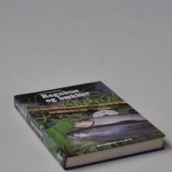 Regnbue og bækker - ørredfiskeri i å og sø