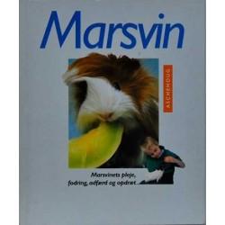 Marsvin. Marsvinets pleje, fodring, adfærd og opdræt