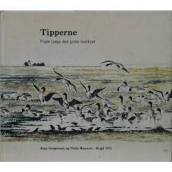 Tipperne - Fugle langs den jyske vestkyst